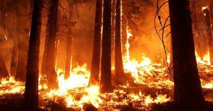 Македонски граѓани на бројот 193 пријавуваат лажни пожари